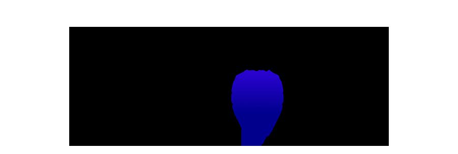 Develop Your Memory logo copy